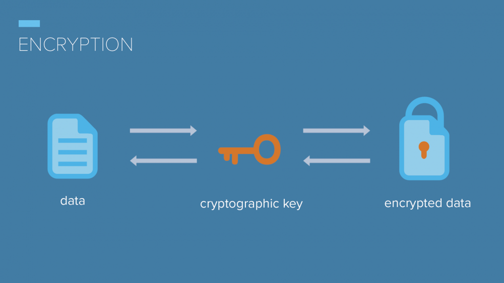 encryption meaning in hindi